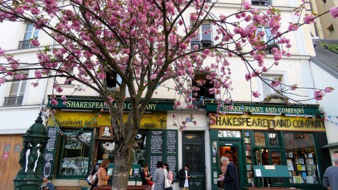 paris sokaklarında kiraz çiçekleri