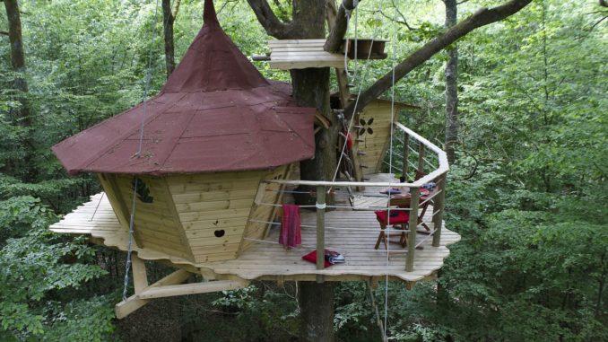 ağaç ev 1