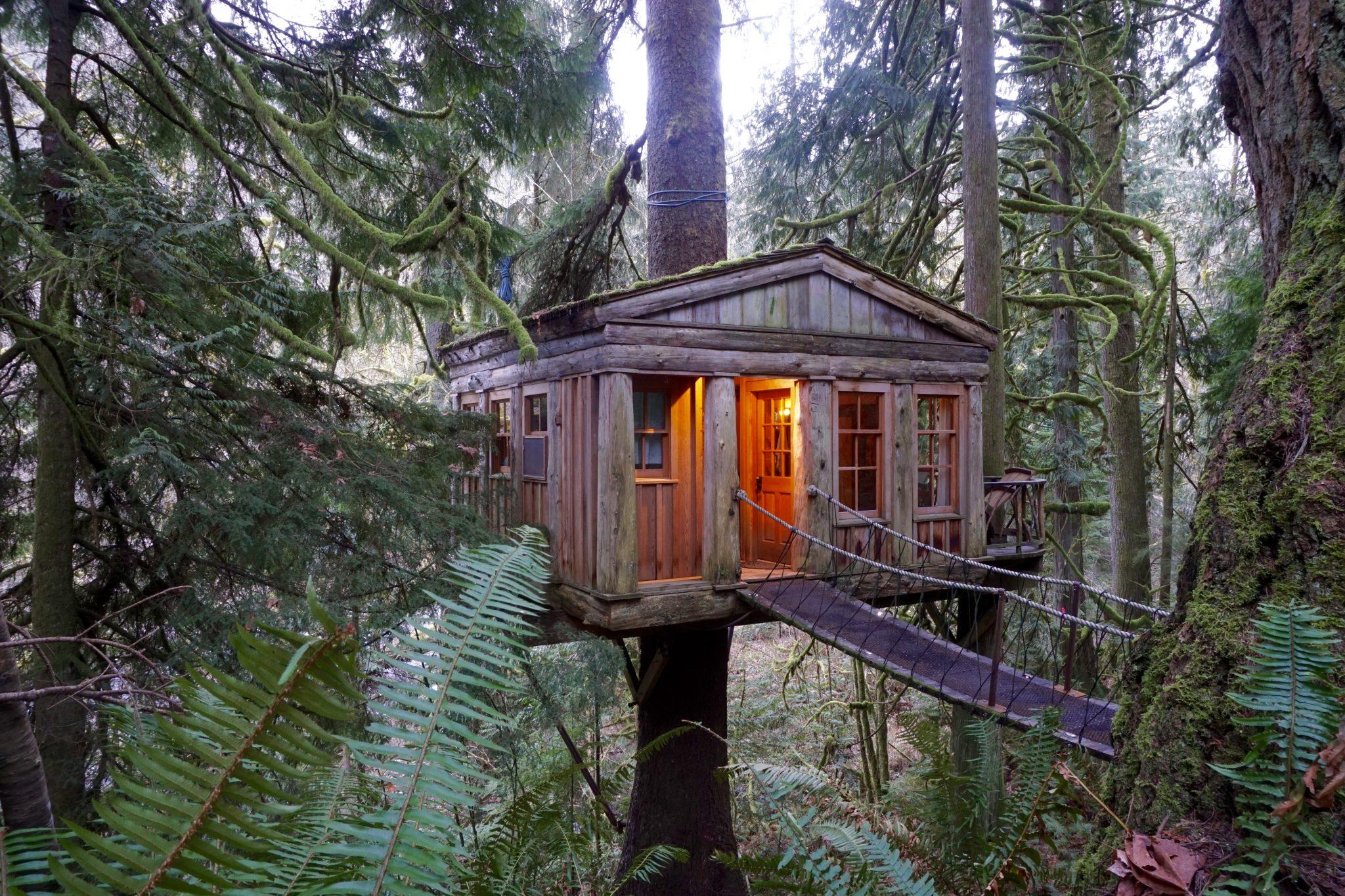 ağaç ev cover