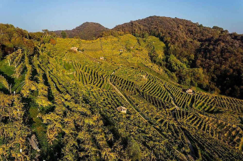 europe wine tour
